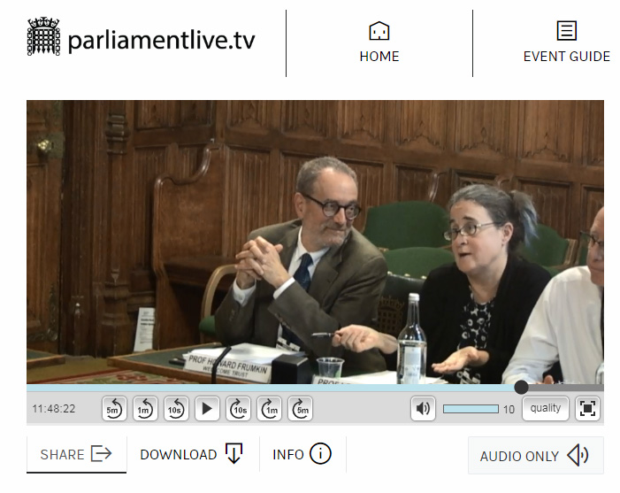 A screenshot of Prof Lora Fleming talking to the parliamentary committee
