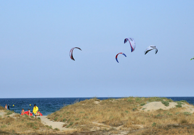 Kites fly in a blue sky above a low dunes